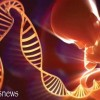 Scientists Discovered Message from God in Human DNA Code!