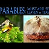 The Parable of the Mustard Seed & The Parable of Leaven