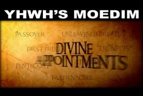 YHWH's MOEDIM: The 7 Prophetic Jewish Feasts